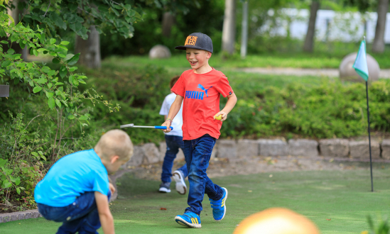 Mini-Golf Course