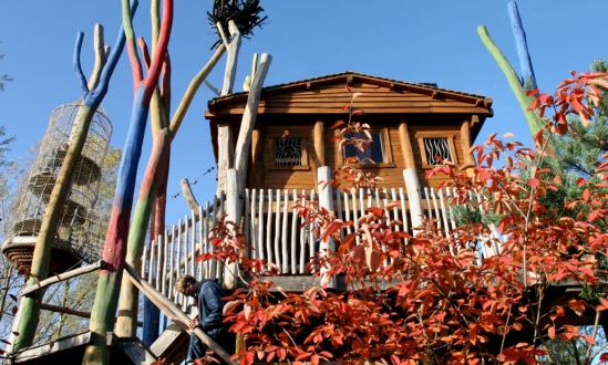 Adventure Tree House with dinos