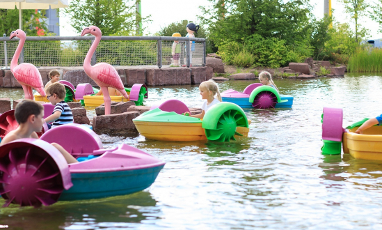 Power Paddle Boats